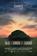 Bajo la Sombra del Guacarí