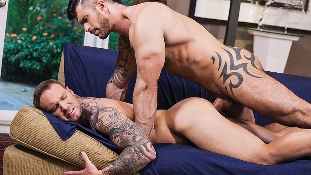 Watch gay porn online for free
