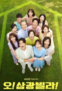 Homemade Love Story S01E02 720p HDTV AAC H.265-IXD