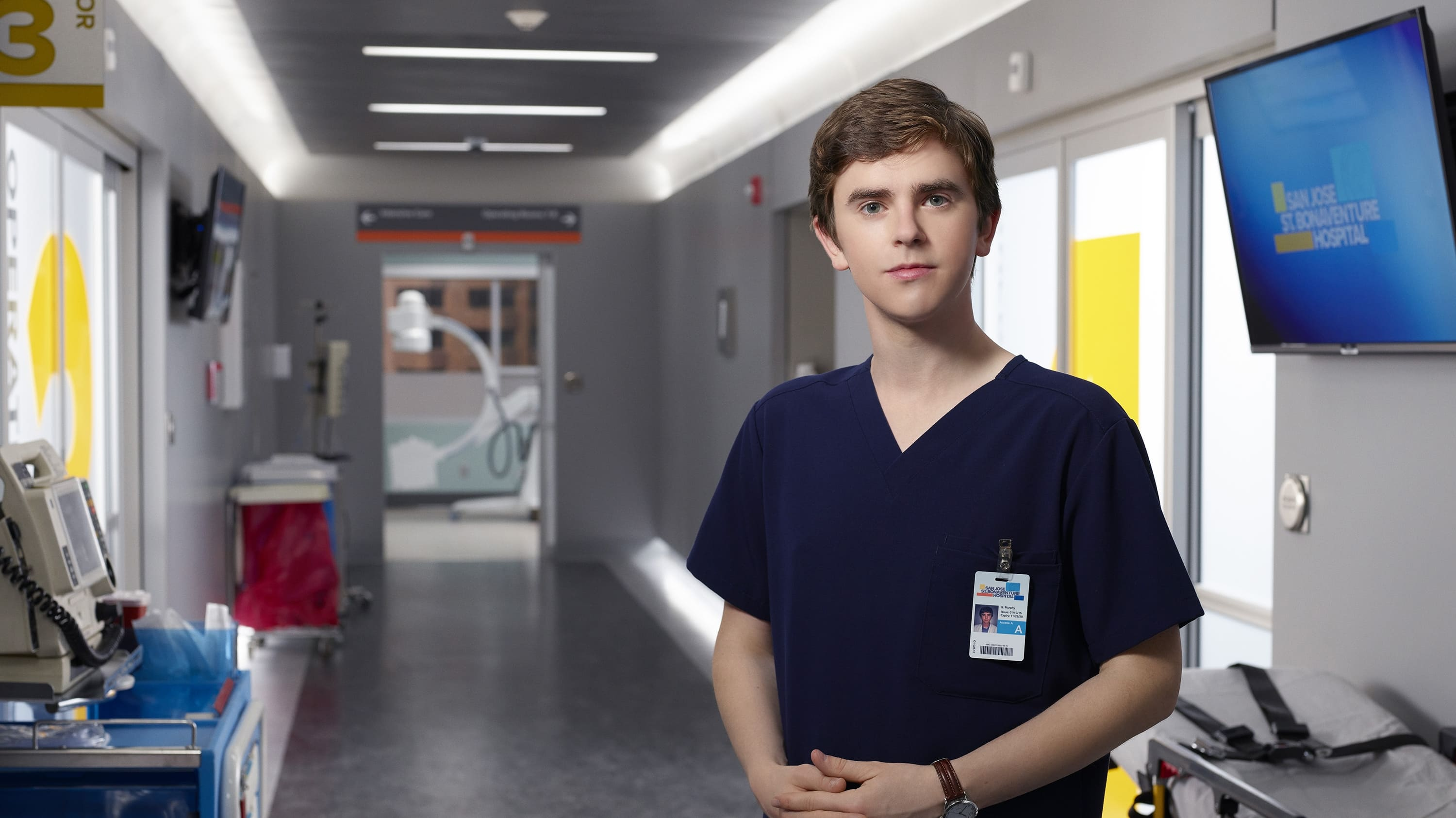 The Good Doctor TV Series 2017   Backdrops  The Movie