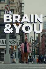 The Brain & You