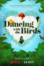 Ballando con gli uccelli