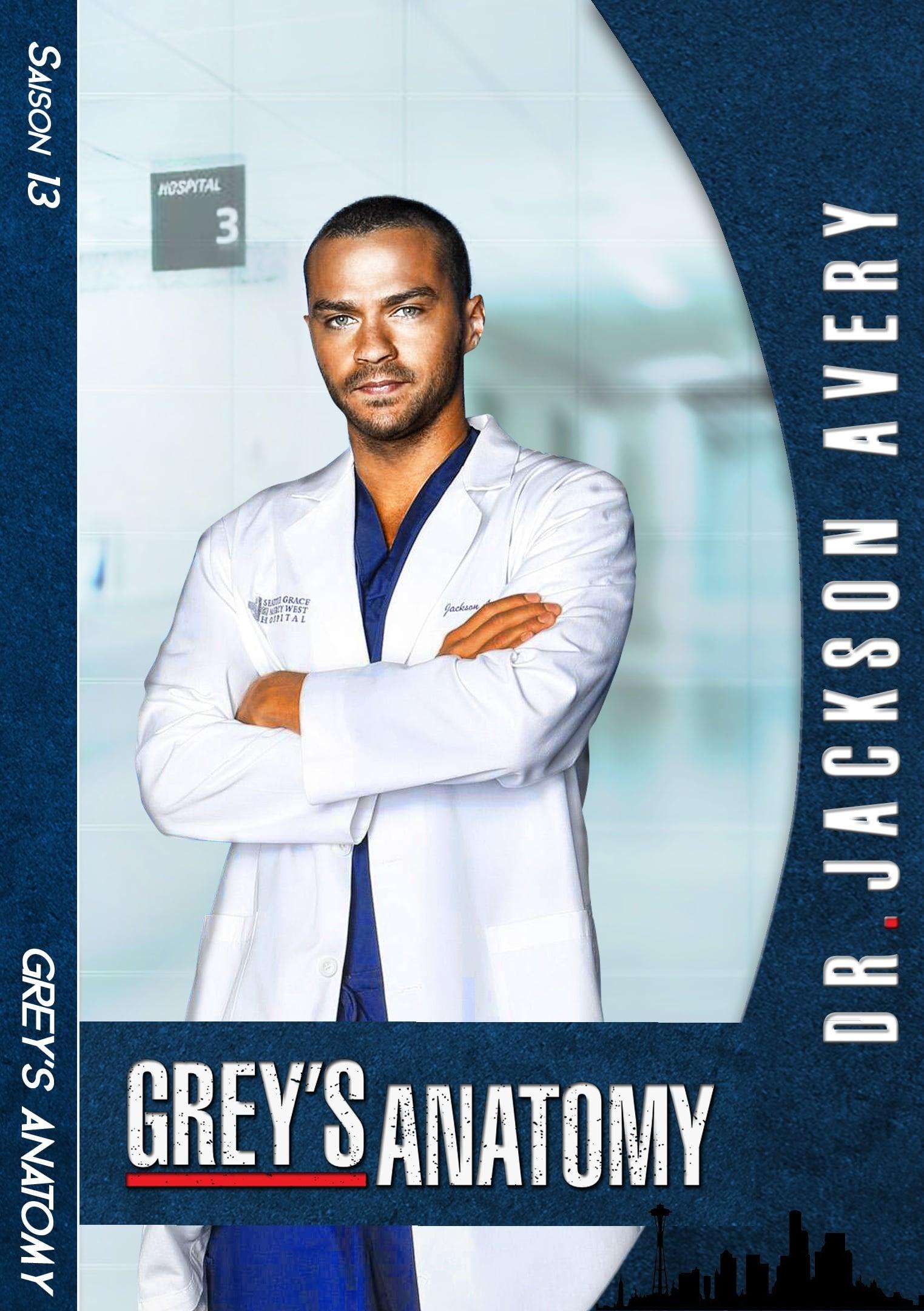 Grey's Anatomy Saison 15 Episode 13 Vostfr : grey's, anatomy, saison, episode, vostfr, Grey's, Anatomy, Streaming, Telechargement, Serie
