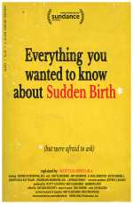 Everything You Wanted to Know About Sudden Birth (but were afraid to ask)