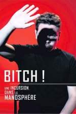 Bitch! Une incursion dans la manosphère
