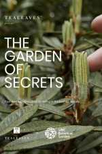 The Garden of Secrets