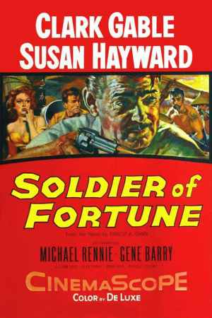 Image Soldier of Fortune