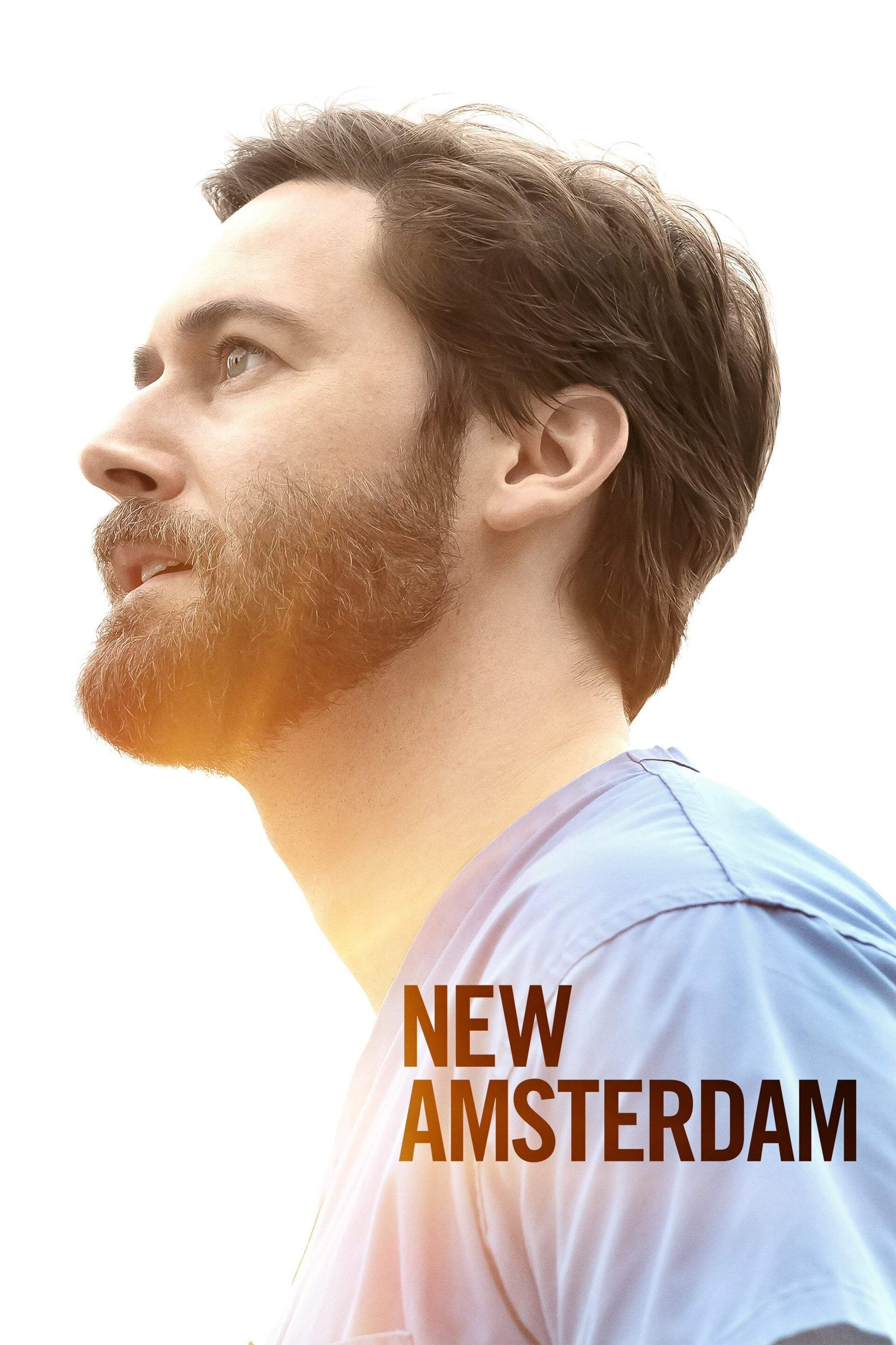 Poster New Amsterdam 2018