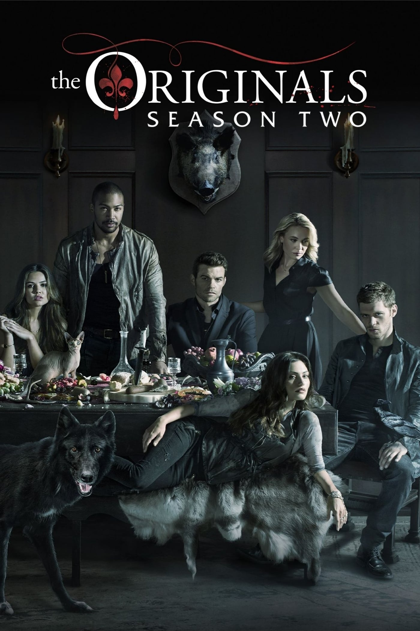 The Originals Streaming Sur Zone Telechargement - Serie 2014 -  Telechargement Sur Zone Telechargement