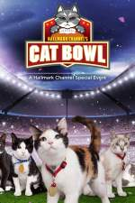Hallmark Channel's 1st Annual Cat Bowl