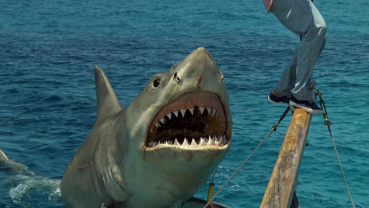 Imagenes de Tiburón, la venganza