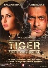 Ver एक था टाइगर (2012) online gratis