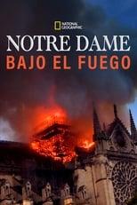 Ver Notre-Dame: Race Against the Inferno (2019) para ver online gratis