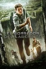 Ver Maze Runner: Correr o morir (2014) para ver online gratis