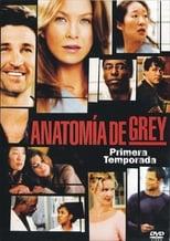 Image Anatomía de Grey
