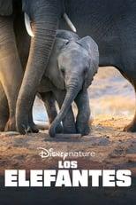 Ver Los elefantes (2020) para ver online gratis