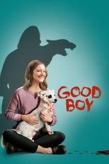 Ver Buen chico (2020) para ver online gratis