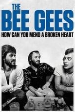 Ver The Bee Gees: How Can You Mend a Broken Heart (2020) online gratis