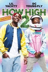 How High 2 poster
