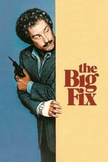 The Big Fix (1978)