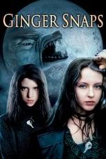 Ver Feroz (2000) para ver online gratis