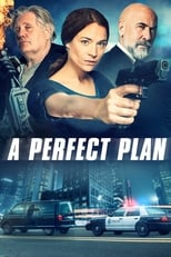 Ver A Perfect Plan (2020) online gratis