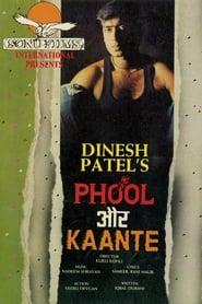 Phool Aur Kaante 1991 Hindi Movie JC WebRip 400mb 480p 1.3GB 720p 4GB 13GB 1080p