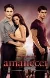 La saga Crepúsculo:  Amanecer - Parte 1 2011