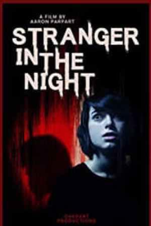 Portada Stranger in the Night