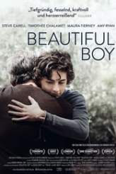 Beautiful Boy 2018