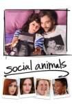 Social Animals 2018