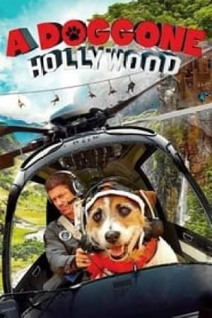 Portada A Doggone Hollywood