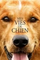Mes vies de chien 2017