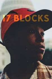 17 Blocks Online