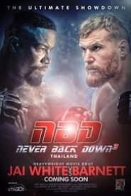 poster Never Back Down: No Surrender