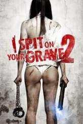I Spit on Your Grave 2 2013