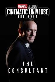 Marvel One-Shot: The Consultant 2011 Full movie online