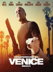 Ver Once Upon a Time in Venice (2017) Online Gratis