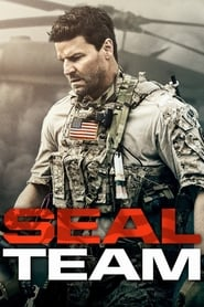 Ver SEAL Team Gratis