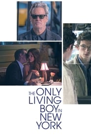 poster The Only Living Boy in New York