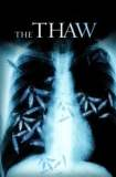 The Thaw 2009
