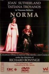 Norma 1981