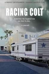 Racing Colt 2018