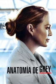 img Anatomía según Grey