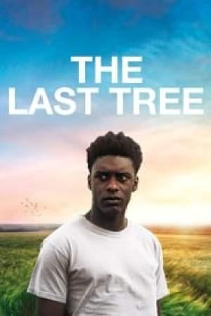 Portada The Last Tree