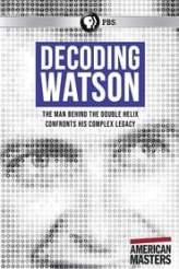 Decoding Watson 2019