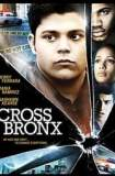 Cross Bronx 2004