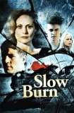 Slow Burn 1986