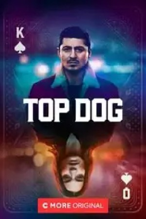 Portada Top Dog