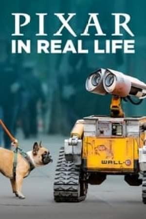Portada Pixar en la vida real